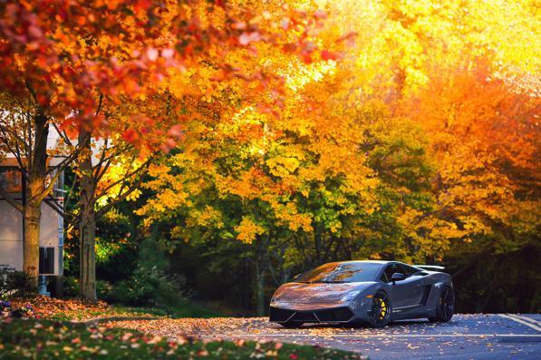 Manutenzione auto in autunno: quali check-up e controlli fare?