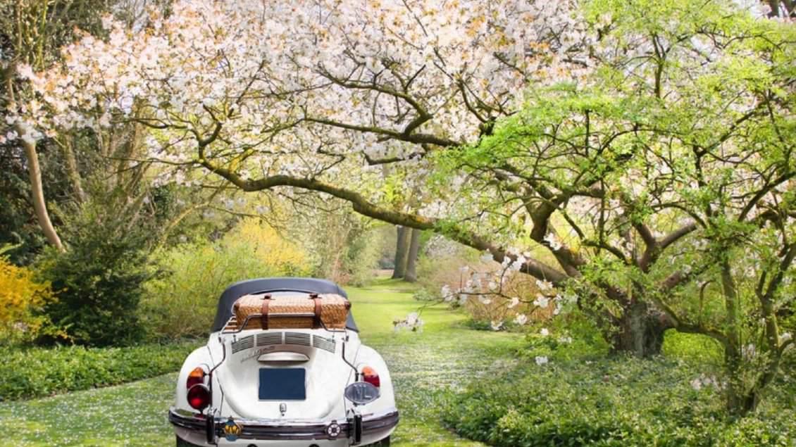 Manutenzione auto in primavera: lista dei controlli da fare