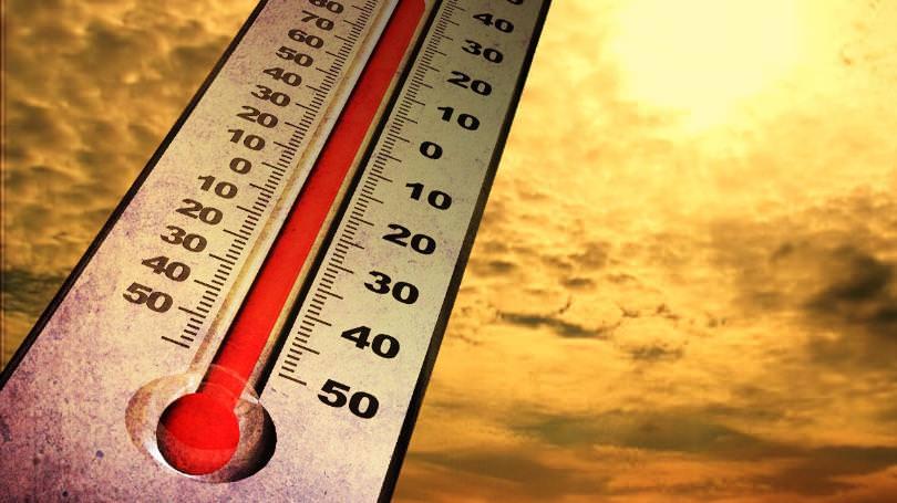 Temperatura interna auto: in estate il caldo può essere mortale!